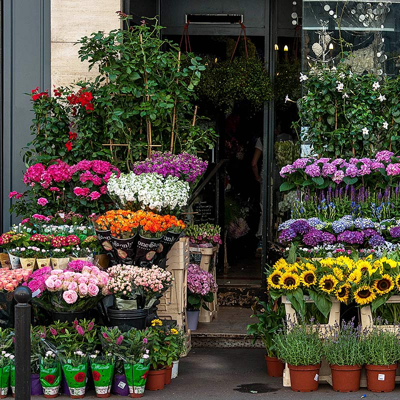Flower shops add to the delightful experience of strolling along Paris streets. Photo by Midale35/Flickr