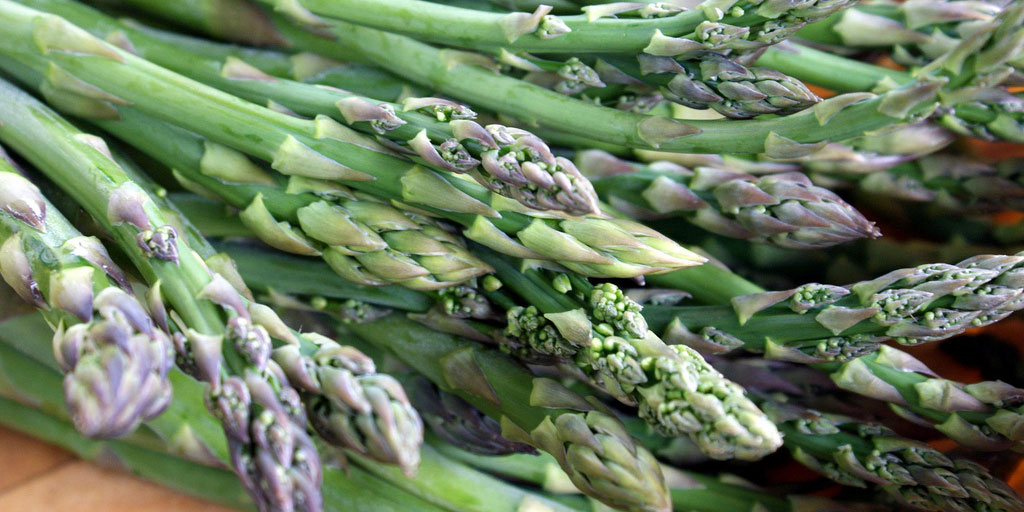 Growing asparagus requires reading a fertilizer label! It thrives with higher phosphate and potassium levels, so a 5-10-10 or 8-24-24 fertilizer should do well.