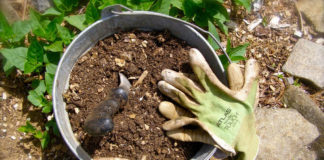 Fertilizer and gardening gloves