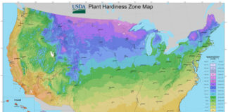 Knowing your planting zone can make the difference between growing plants that will thrive or die.