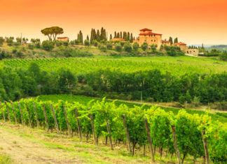 Florence to Chianti in Italy
