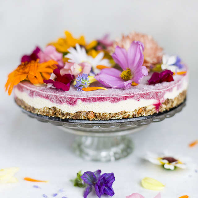 Edible flower recipes include cakes like this one