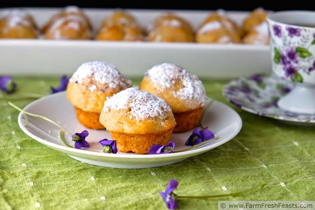 Edible flower recipes include these wild violet muffins