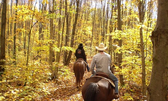 Horseback riding vacations can be in the woods